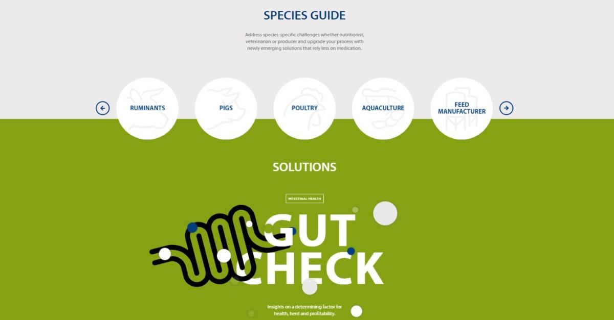 Innovad | Innovative solutions for the livestock industry